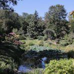 Si vous aimez les jardins zen, japonais et les beaux paysages …