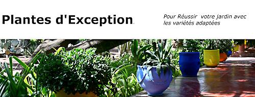 Plantes d'Exception