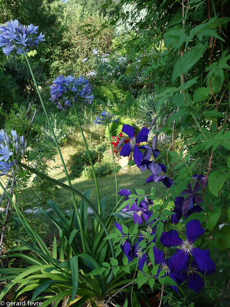 pour de belles plantes et fleurs sachez utiliser les engrais plantes d 39 exception. Black Bedroom Furniture Sets. Home Design Ideas
