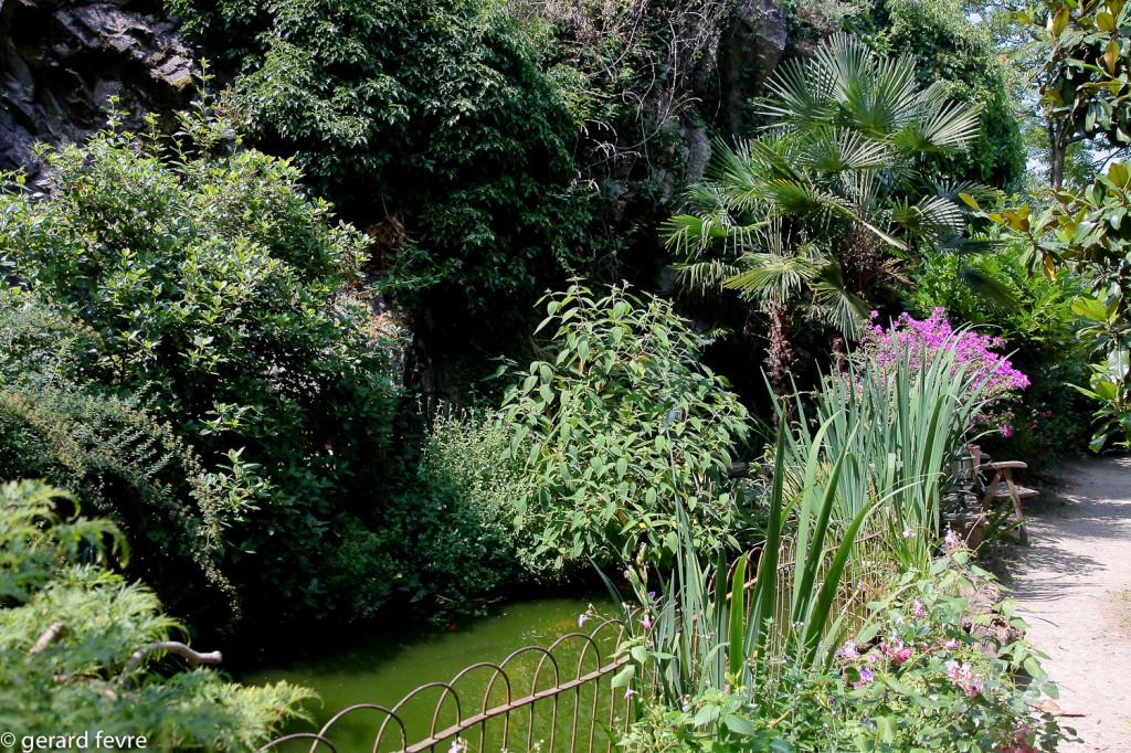 L'étang et ses plantes. Notez le Palmier de Chine et les Bougainvillier