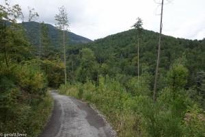 Le chemin d'accès sur 800 m