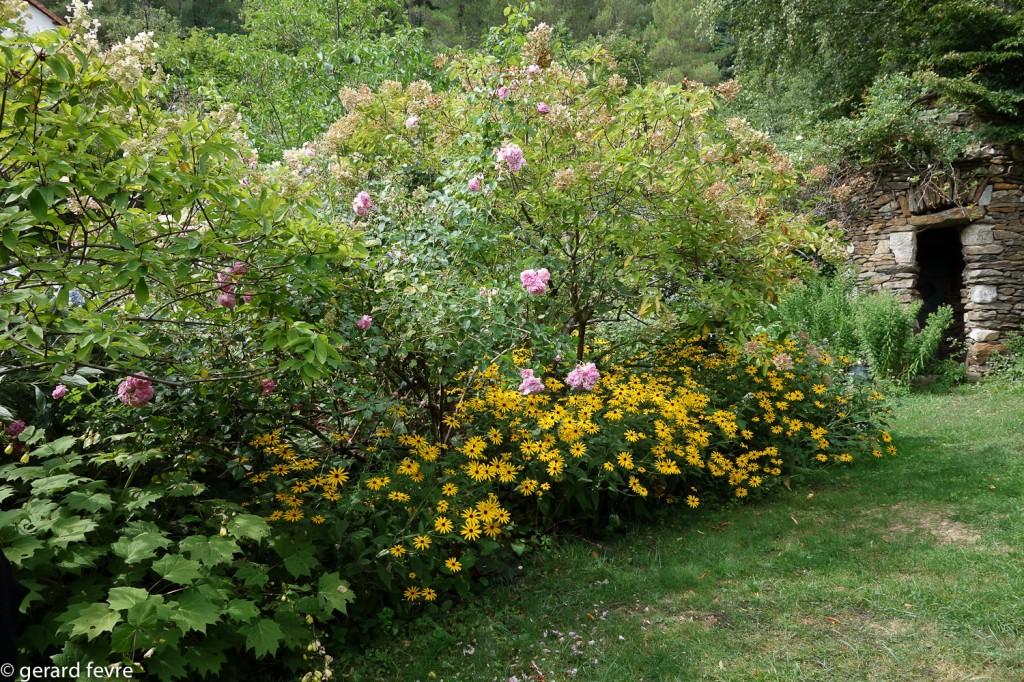 Le pigeonnier au fond avec au premier plan des roses et des rudbeckias