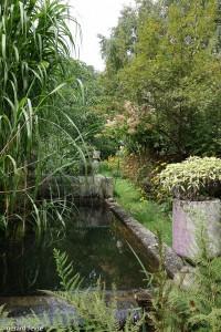 Le bassin des truites avec son environnement végétal : canne de provence, rudbeckia, hydrangea, ...