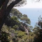 Beauté et Méditation : le Jardin des Méditerranées
