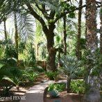Un jardin d'exception au Maroc …